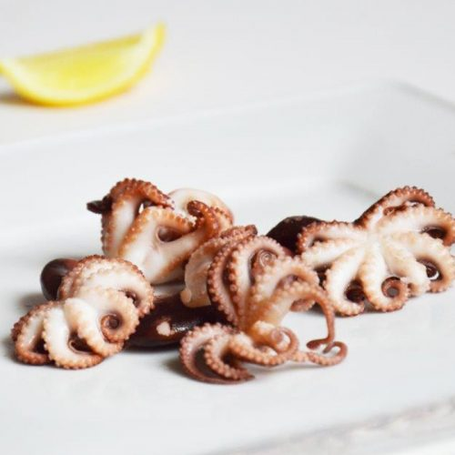 Baby Octopus Whole Cleaned 40/60 | 1kg