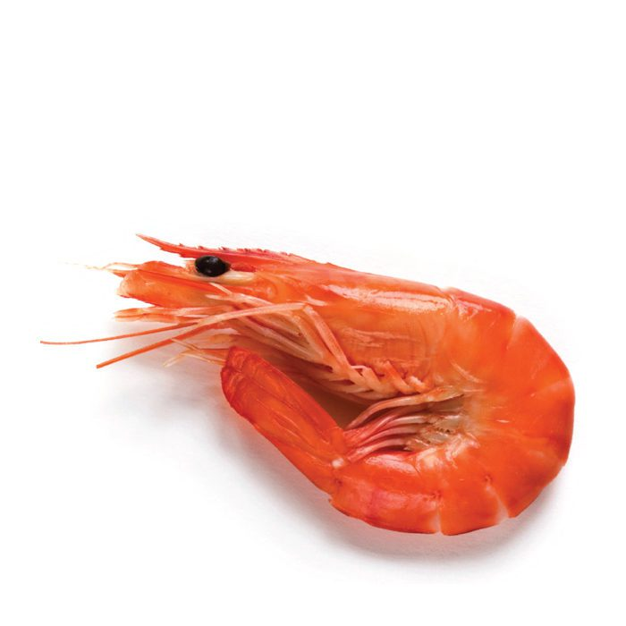 Cooked Prawn Head On Shell On Small | 1kg