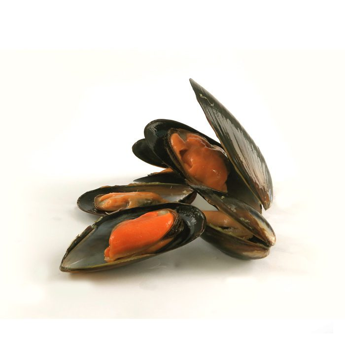 Cooked Whole Shell Mussel 50/70 | 1kg